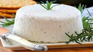 Как приготовить адыгейский сыр в домашних условиях: рецепты