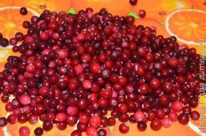 Как хранить клюкву - способы хранения ягод в воде, в холодильнике и на балконе