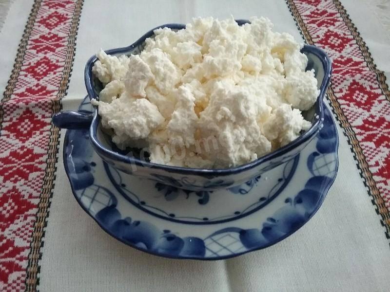 Домашний творог - рецепты
