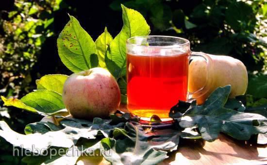 Чай из листьев яблони |  советы врачей | znaemlechim.ru