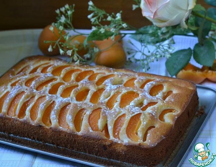 Выпечка с абрикосами — 28 рецептов с фото пошагово. как приготовить абрикосовую выпечку?