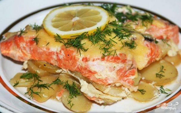 Красная рыба в духовке - вкусные рецепты из семги в фольге, кеты, целой форели и лосося в сливочном соусе