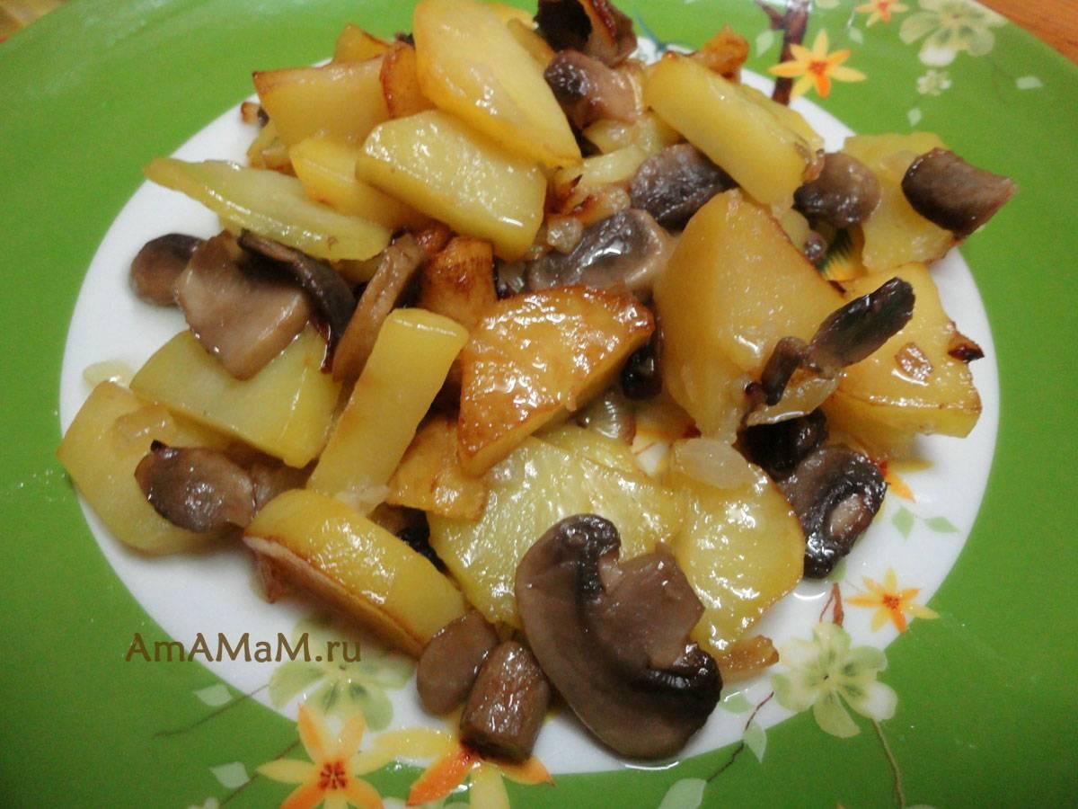 Жареная картошка с шампиньонами и луком. пошаговый рецепт с фото • кушать нет
