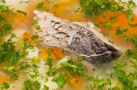 Уха из морской рыбы