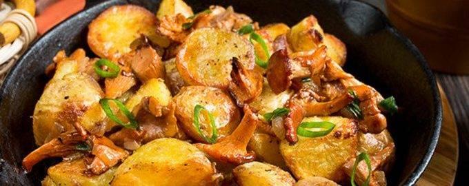 Жареная картошка с лисичками на сковороде — ягоды грибы