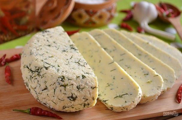 Домашний сыр из творога. рецепт приготовления плавленного сыра в домашних условиях