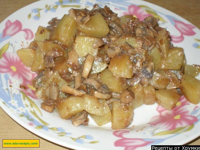 Грибы вешенки в духовке: рецепты, как приготовить вешенки с картошкой и другие грибные блюда