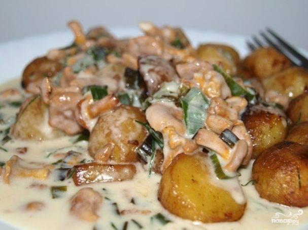Говядина с картофелем и грибами в сливках