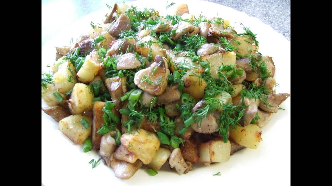 Как приготовить жареные шампиньоны с картошкой на сковороде. рецепты с фото