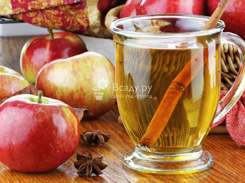 Яблочный сок на зиму в домашних условиях с помощью соковыжималки и соковарки