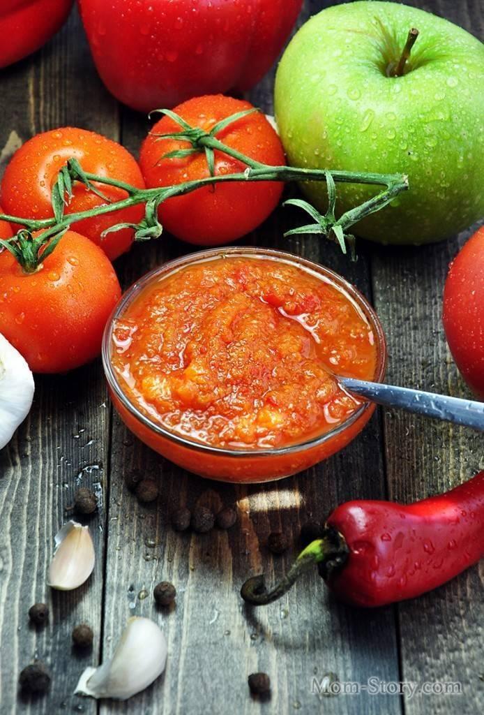 Аджика с яблоками на зиму: рецепт с фото пошагово. как приготовить яблочную аджику на зиму?