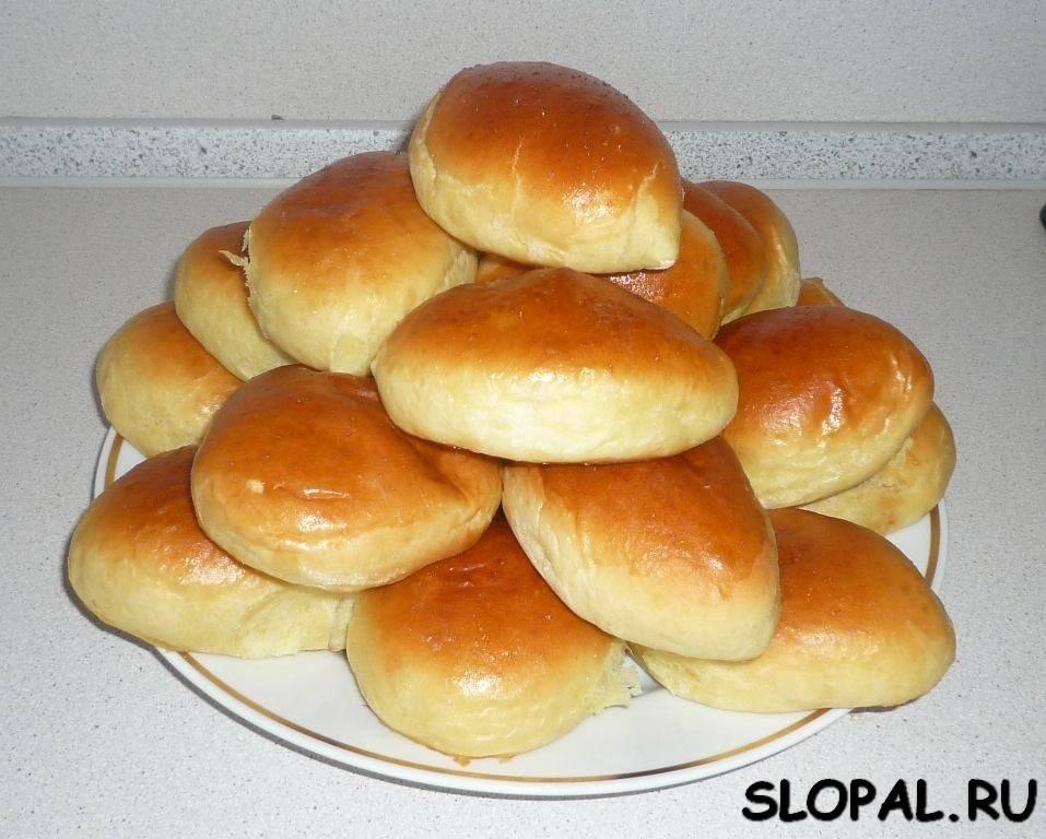 Пирожки с яблоками в духовке из дрожжевого теста. рецепты вкусных яблочных пирожков