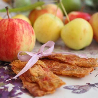 Пастила - рецепты в домашних условиях из яблок, клубники, сливы и вишни