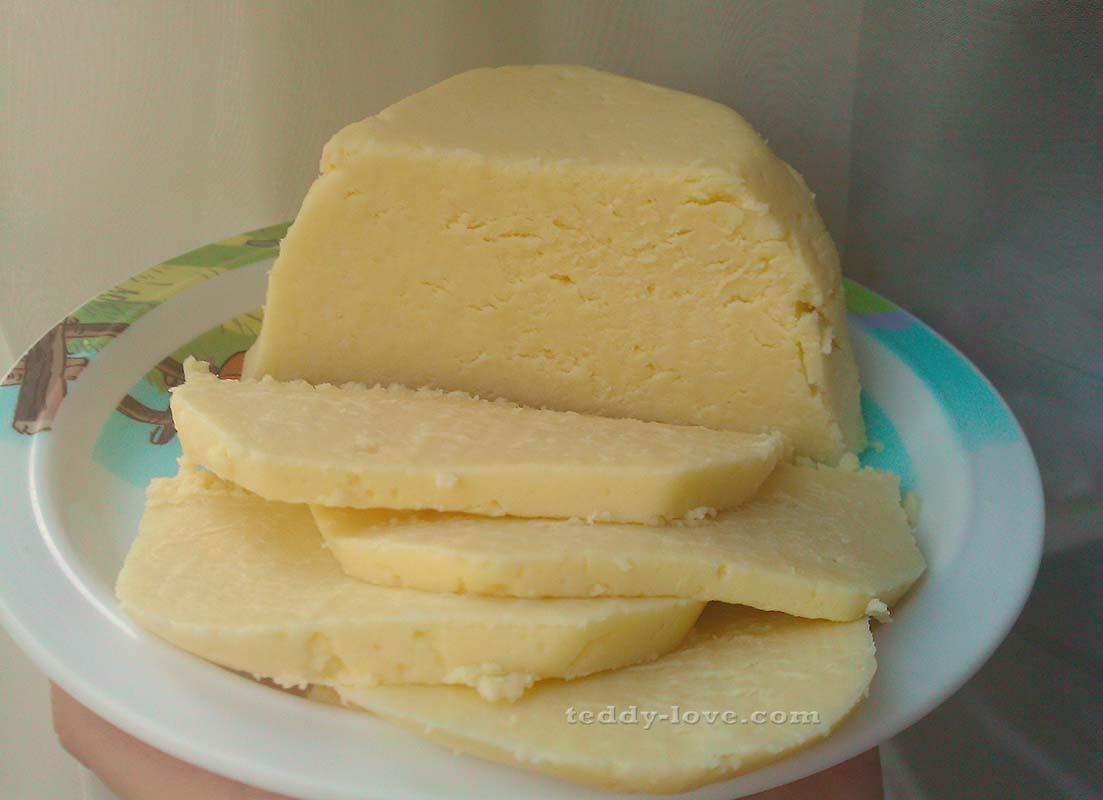 Домашний сыр из творога и молока - рецепты плавленного, твердого, мягкого и сливочного сыра
