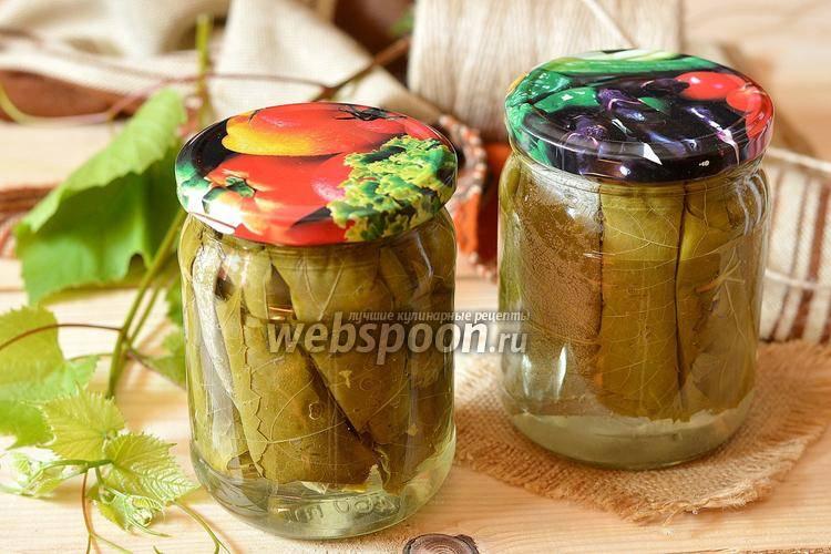 Засолка листьев винограда на зиму: рецепт с фото пошагово. как засолить виноградные листья на зиму?