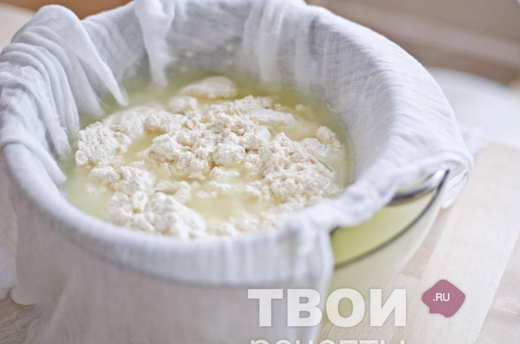 Творог из молока в домашних условиях: быстрый рецепт приготовления