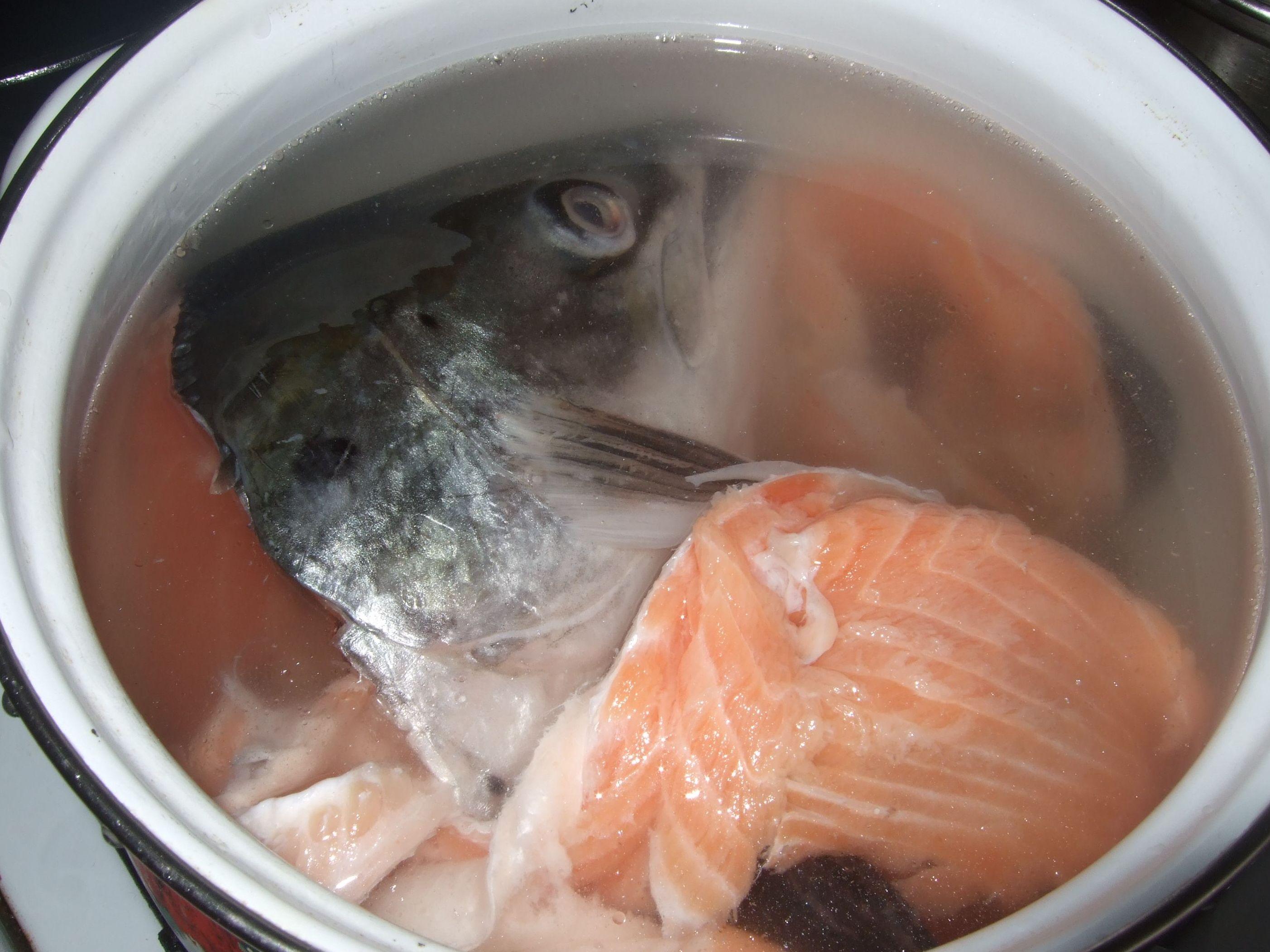 Рыбный бульон — спасение от болезней! готовим правильно!