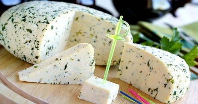 Домашний сыр из творога - самые несложные рецепты приготовления