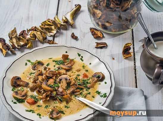 Суп из сушеных грибов: классический рецепт приготовления