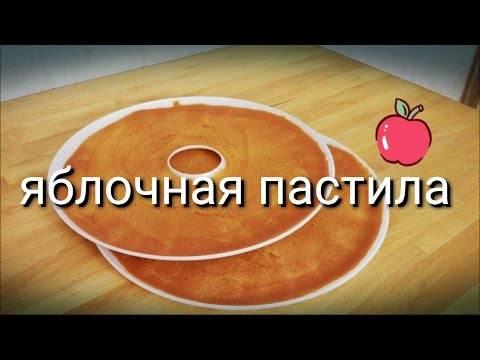 Яблочная пастила: старинный рецепт, без сахара, в духовке или мультиварке, фото и видео