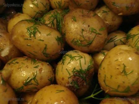 Картофель молодой - рецепты