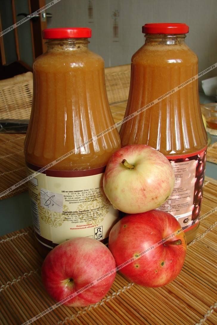 Яблочный сок - рецепты в домашних условиях через соковыжималку, в соковарке и через мясорубку