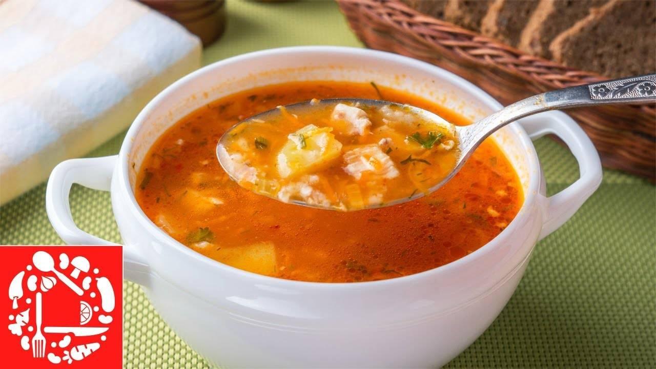 Суп из индейки для ребенка – особенности и порядок приготовления