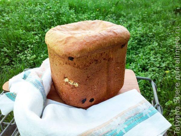 Изумительный ванильный кекс с изюмом в хлебопечке