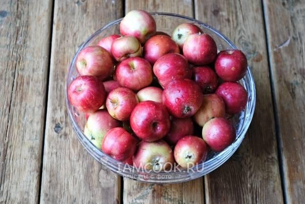 Почему червивые яблоки на дереве и что с этим делать