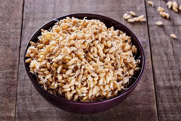 Каша из льна и другие рецепты для сыроедов