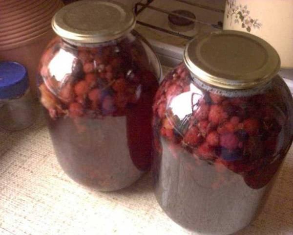 Компот ассорти на зиму из фруктов, ягод, без стерилизации и без сахара