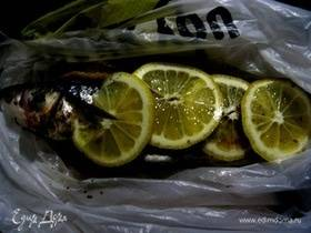 Кефаль рыба её польза и вред. польза и вред кефали