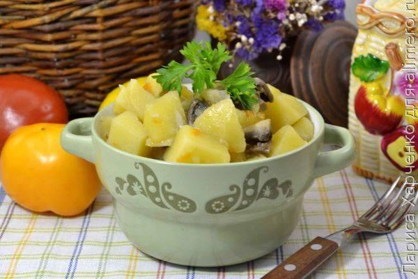 Баклажаны с грибами и картошкой в духовке рецепт