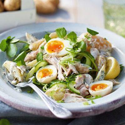 Салат из скумбрии - оригинальные варианты закуски из рыбы на любой вкус!