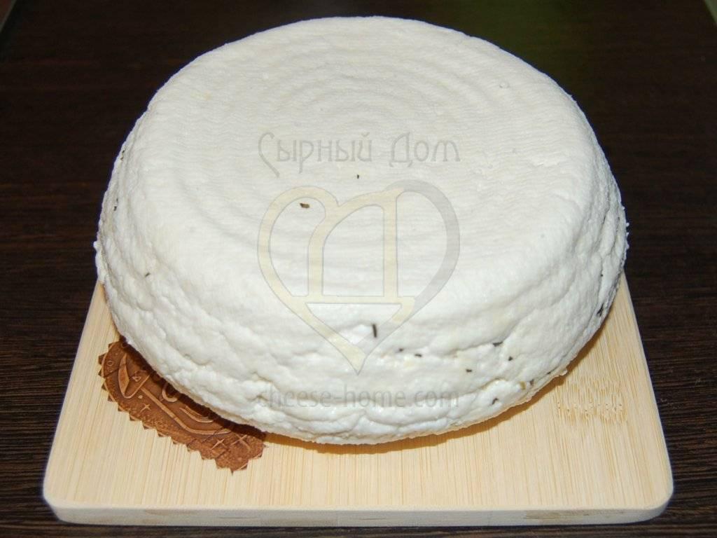 Адыгейский сыр без яиц и уксуса