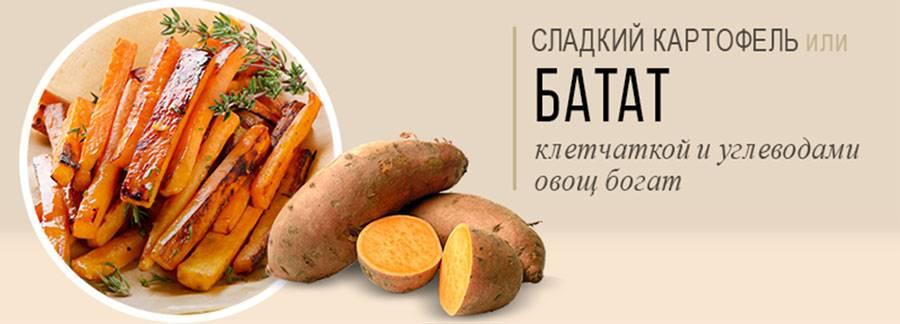 Как сделать пюре из картошки?