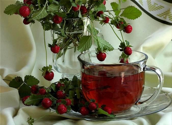 Чай из листьев ежевики: польза и вред | польза и вред
