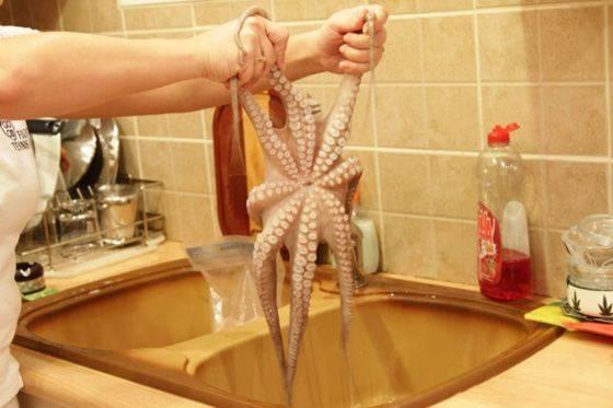 Как пожарить осьминога на сковороде
