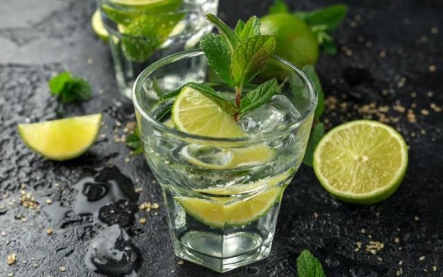 Восемь рецептов летних лимонадов