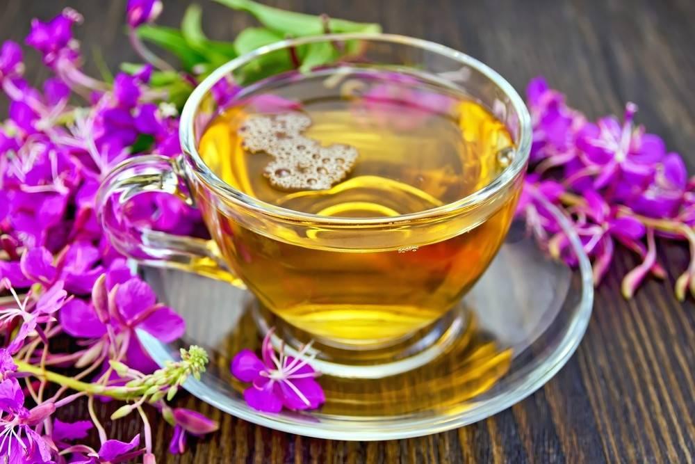 Заготовка иван-чая в домашних условиях: как собирать, ферментировать и сушить кипрей [15 ошибок и 12 способов сделать это правильно]