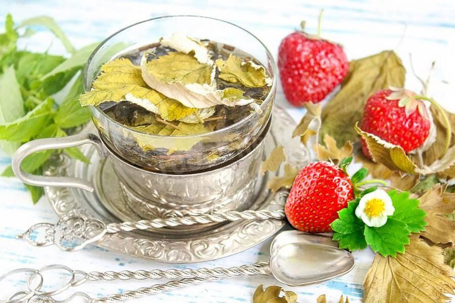 Чай из листа смородины (ферментированный): польза для организма