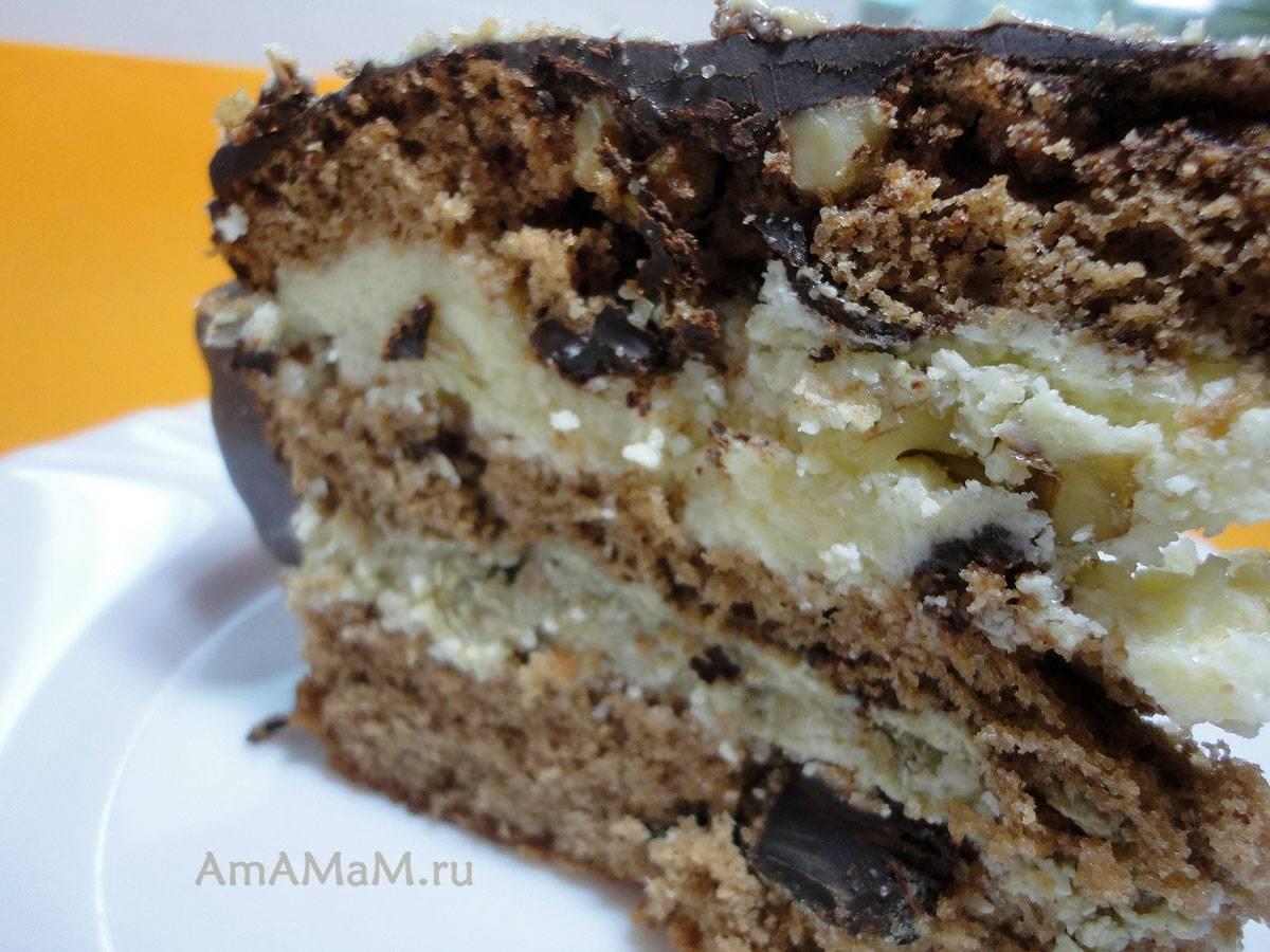 Торт «три шоколада»: пошаговые рецепты с фото и видео приготовления торта в домашних условиях