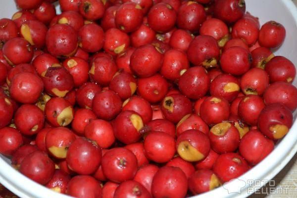 Заготовка ягод боярышника на зиму: 8 лучших рецептов