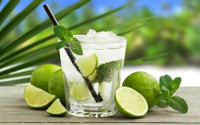 Домашний лимонад из мяты, лимона и апельсина – рецепт с фото