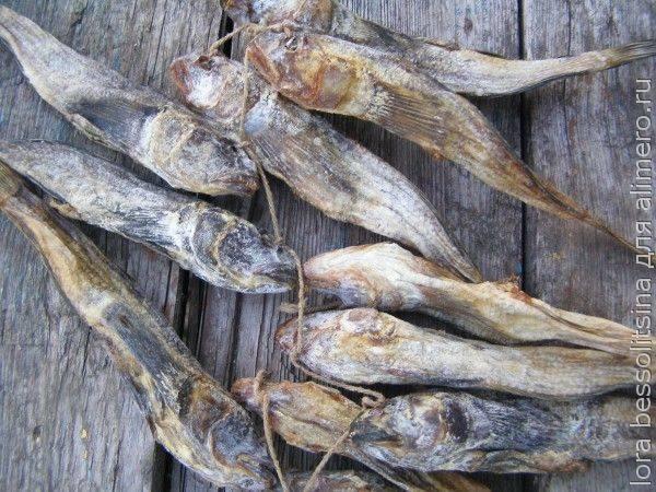 Бычки в соусе, рецепт приготовления с фото