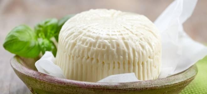 Домашний сыр из творога и молока - 8 интересных идей приготовления кисломолочного продукта