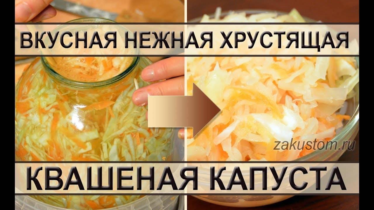 Домашняя квашеная капуста: простой рецепт
