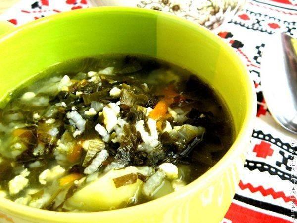 Это не просто борщ, а великолепный рецепт летнего зеленого борща со шпинатом