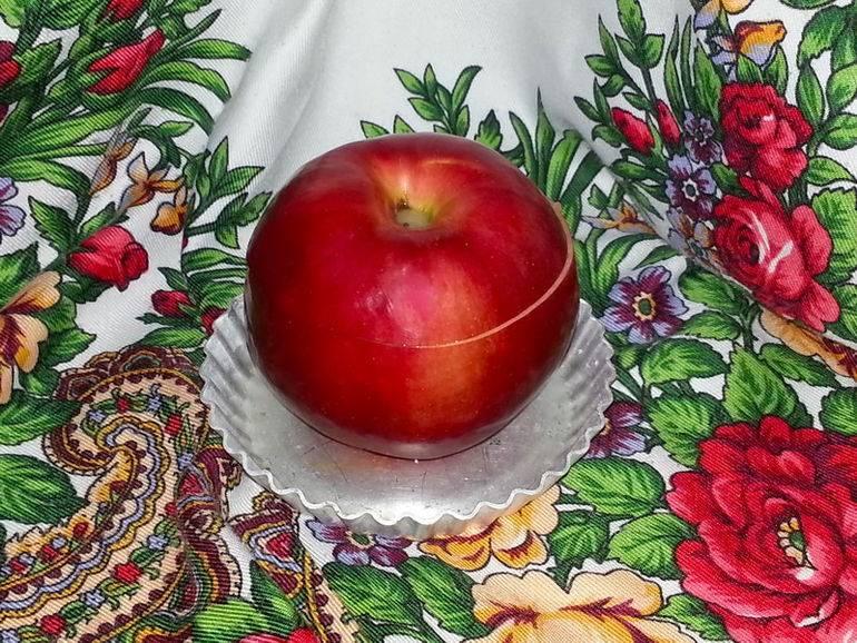 Яблоки, фаршированные фруктами.. 500 рецептов для вечеринок