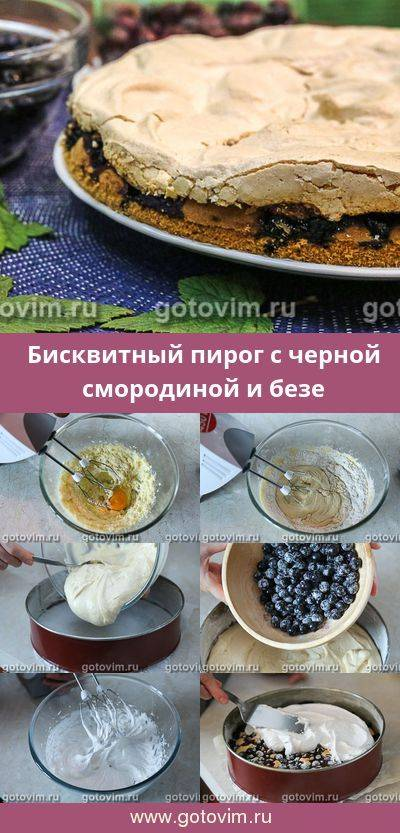 Ореховый бисквит с черной смородиной